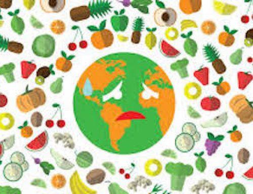 5 febbraio 2020 : Giornata nazionale contro lo spreco alimentare.